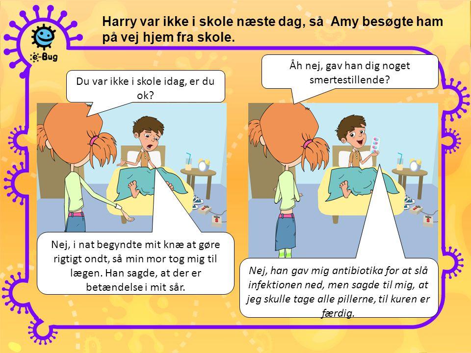Harry var ikke i skole næste dag, så Amy besøgte ham på vej hjem fra skole.