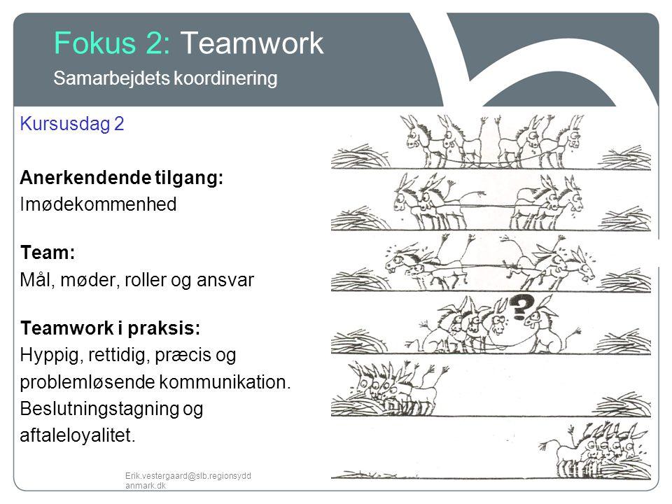Fokus 2: Teamwork Samarbejdets koordinering