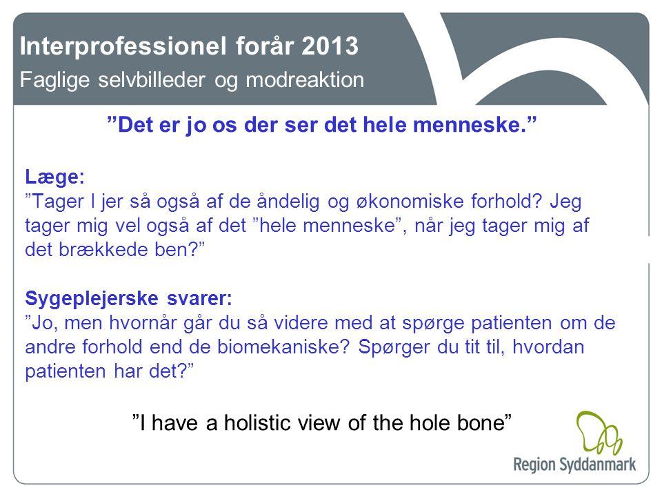 Interprofessionel forår 2013 Faglige selvbilleder og modreaktion