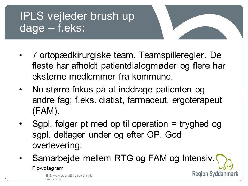 IPLS vejleder brush up dage – f.eks: