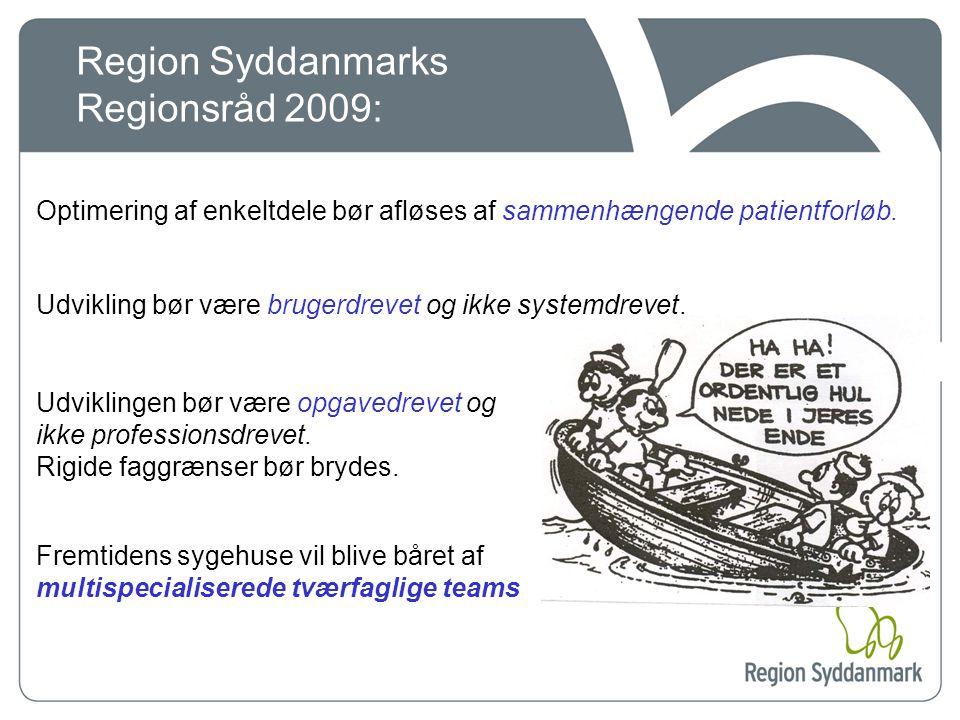 Region Syddanmarks Regionsråd 2009: