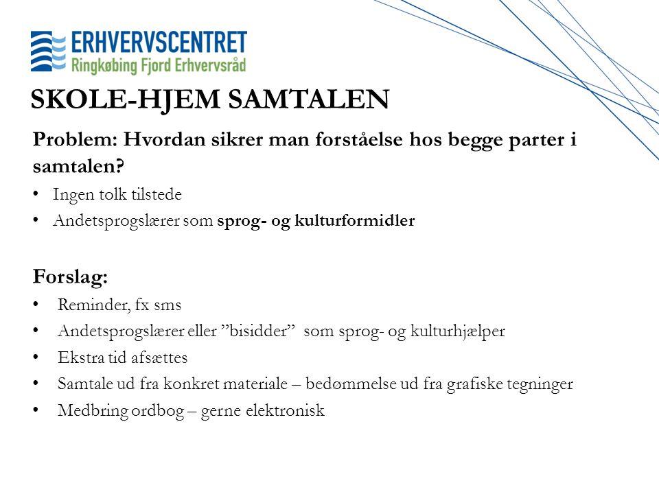 SKOLE-HJEM SAMTALEN Problem: Hvordan sikrer man forståelse hos begge parter i samtalen Ingen tolk tilstede.