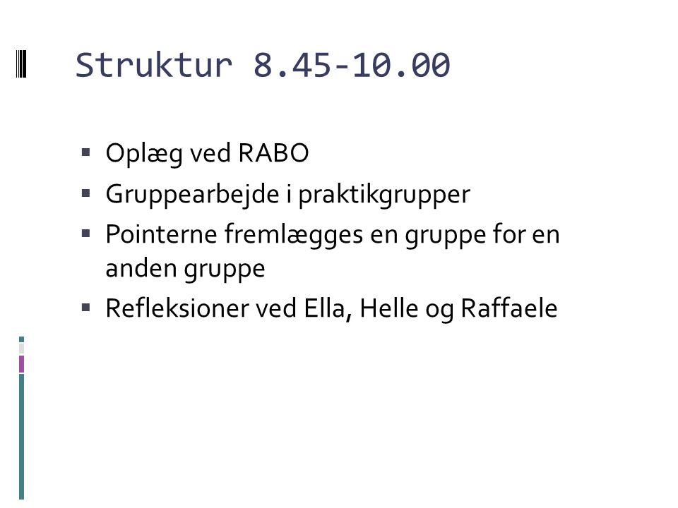 Struktur 8.45-10.00 Oplæg ved RABO Gruppearbejde i praktikgrupper