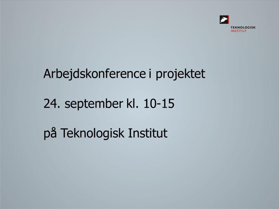 Arbejdskonference i projektet