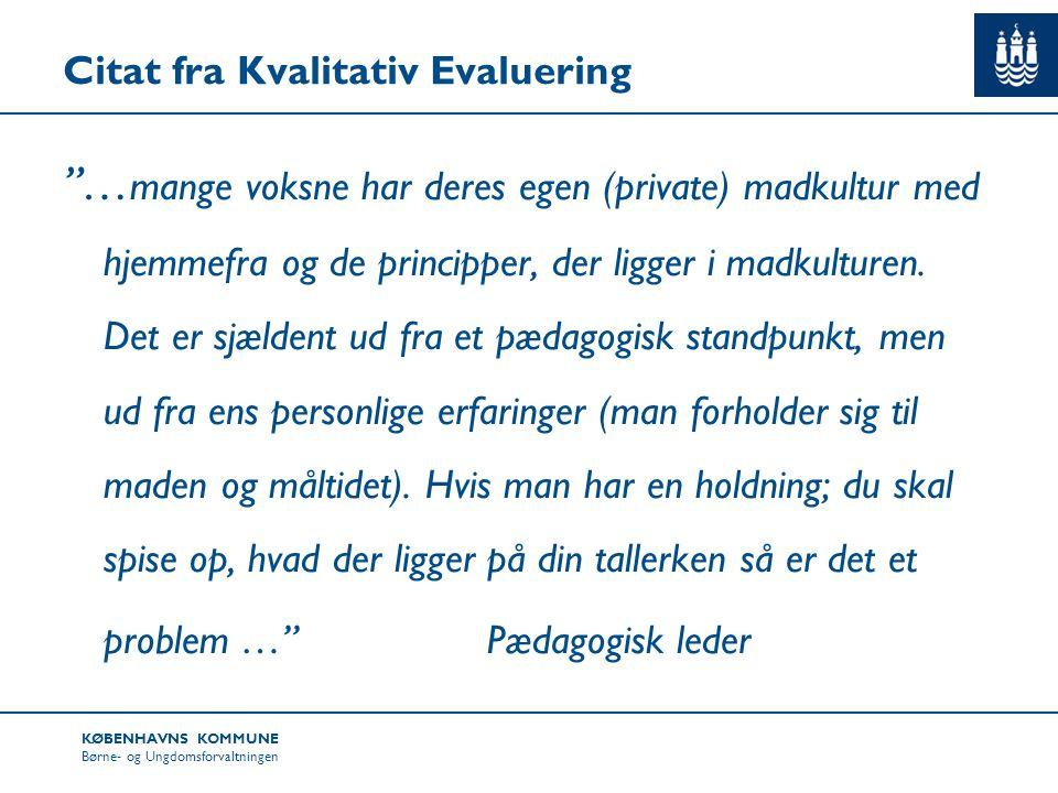Citat fra Kvalitativ Evaluering