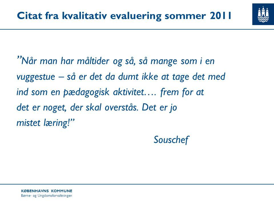 Citat fra kvalitativ evaluering sommer 2011