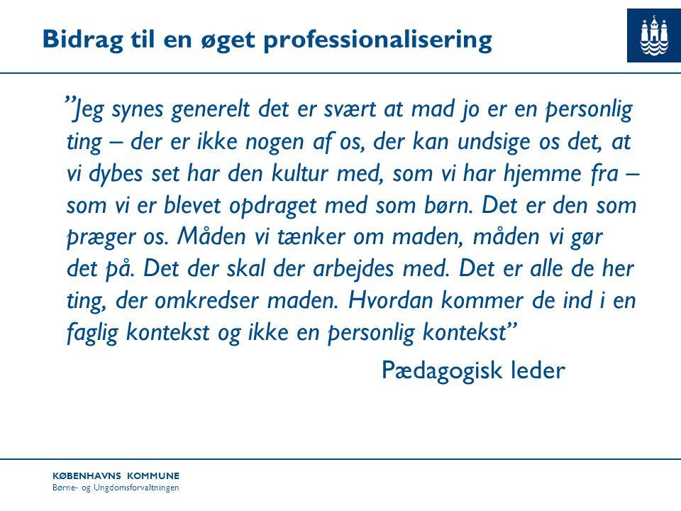 Bidrag til en øget professionalisering