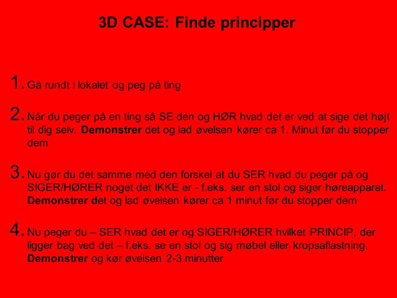 3D CASE: Finde principper