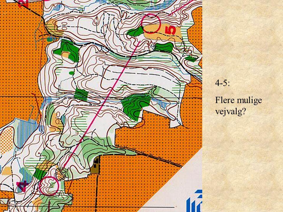 4-5: Flere mulige vejvalg
