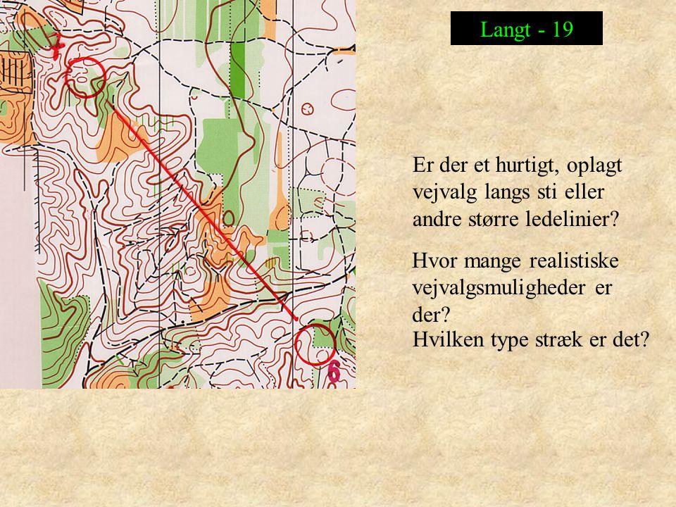 Langt - 19 Er der et hurtigt, oplagt vejvalg langs sti eller andre større ledelinier Hvor mange realistiske vejvalgsmuligheder er der