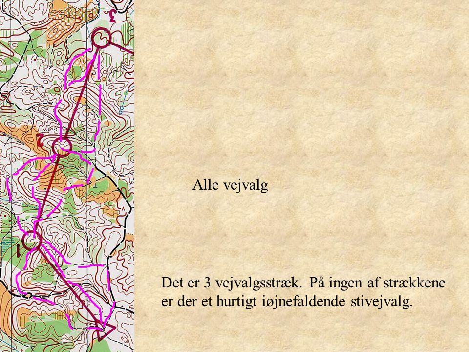 Alle vejvalg Det er 3 vejvalgsstræk.