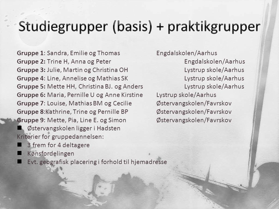 Studiegrupper (basis) + praktikgrupper
