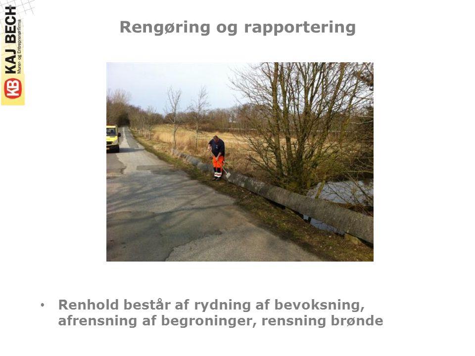Rengøring og rapportering