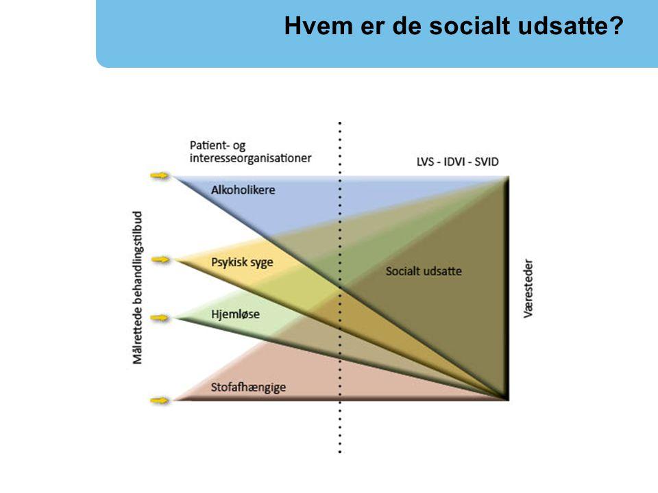 Hvem er de socialt udsatte