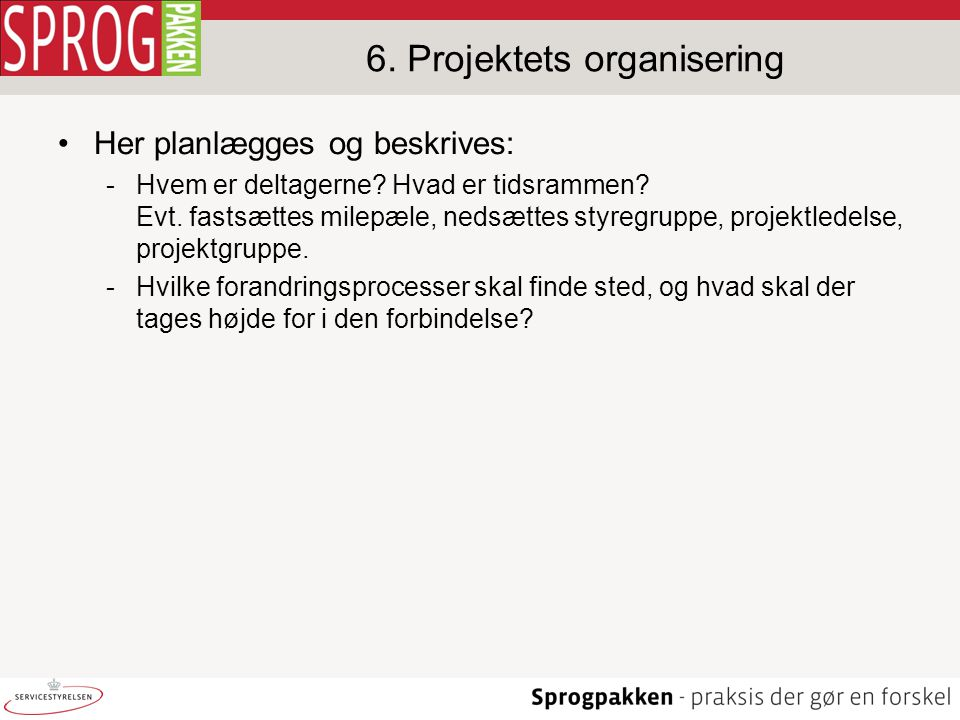 6. Projektets organisering