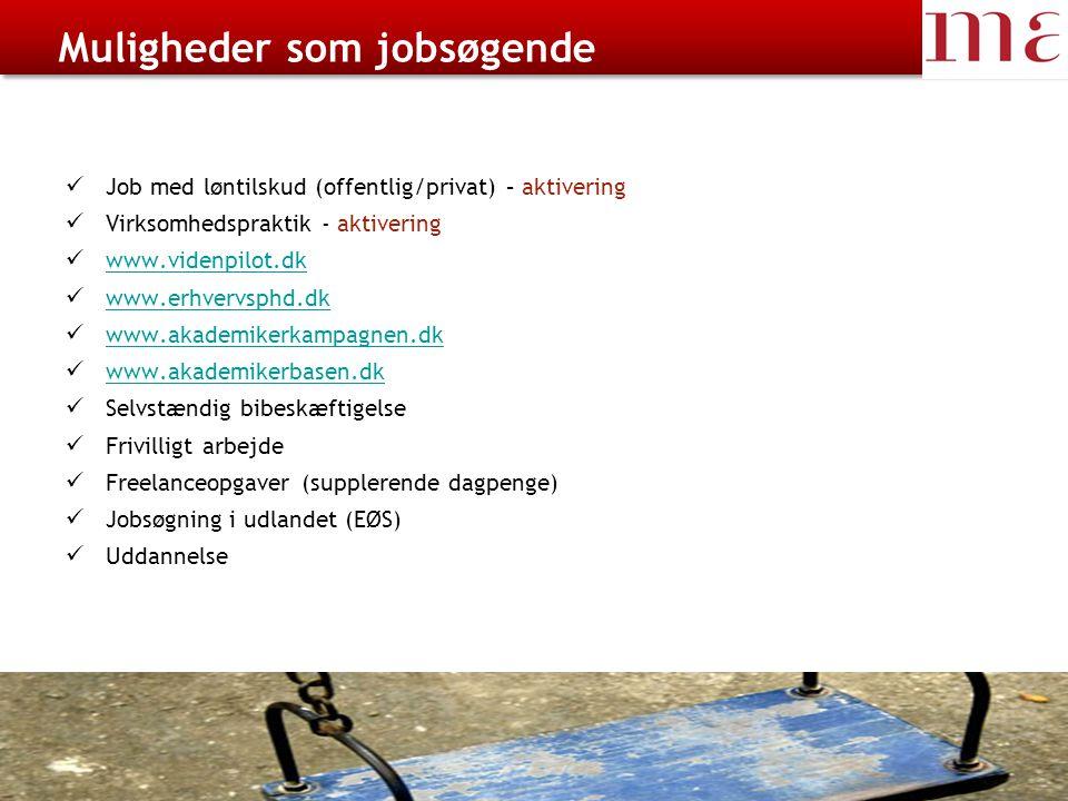 Muligheder som jobsøgende