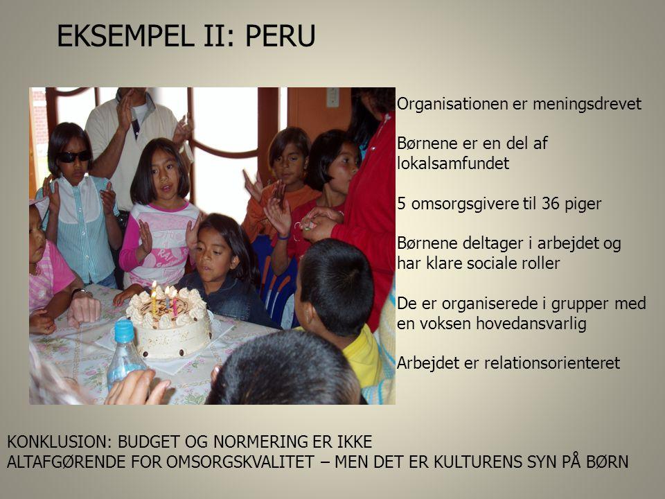 EKSEMPEL II: PERU Organisationen er meningsdrevet