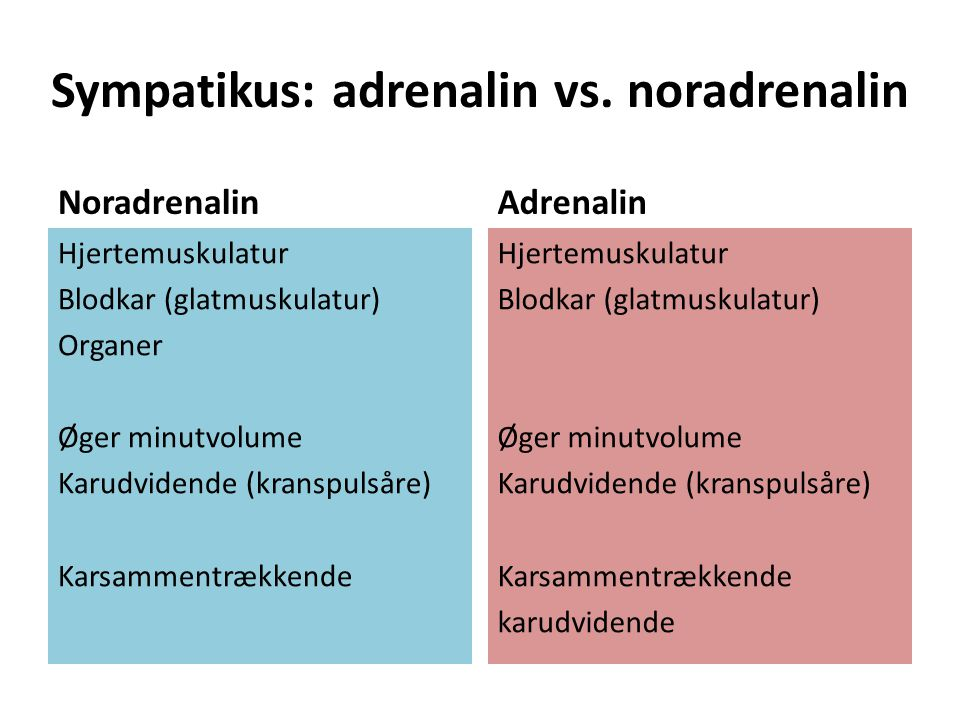 Sympatikus: adrenalin vs. noradrenalin