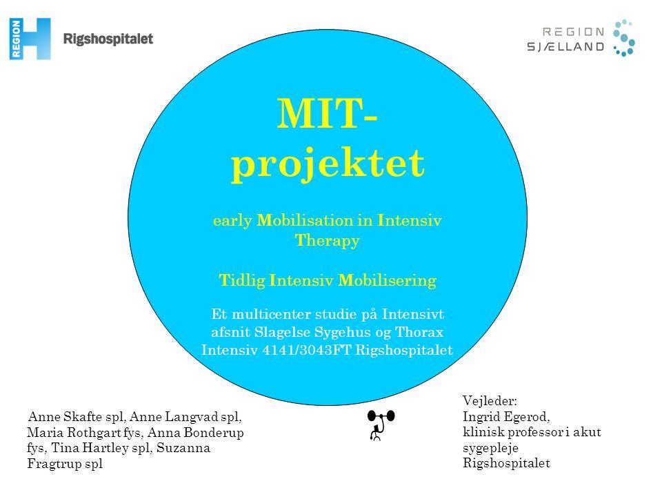 MIT- projektet MIT-Projektet Træning Foreløbige resultater