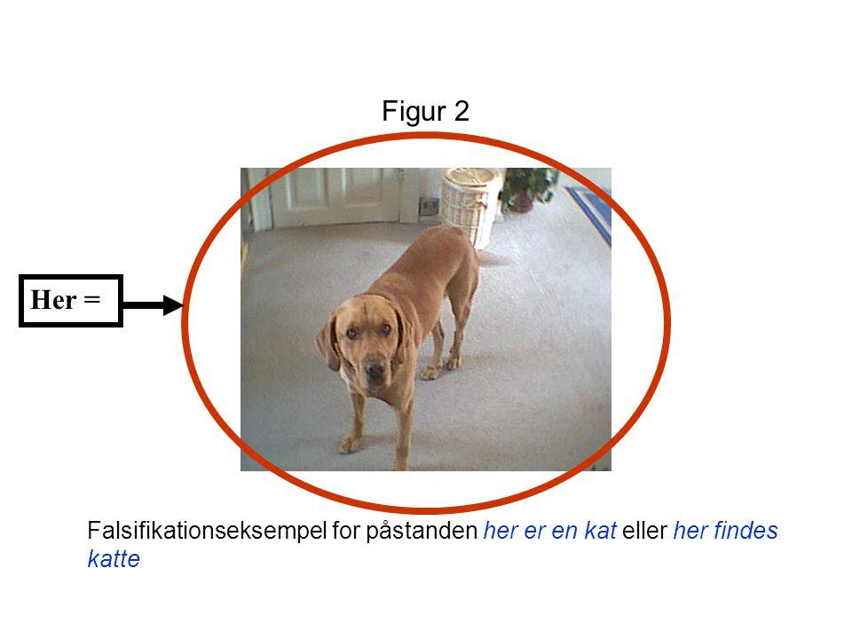 Figur 2 Her = Falsifikationseksempel for påstanden her er en kat eller her findes katte