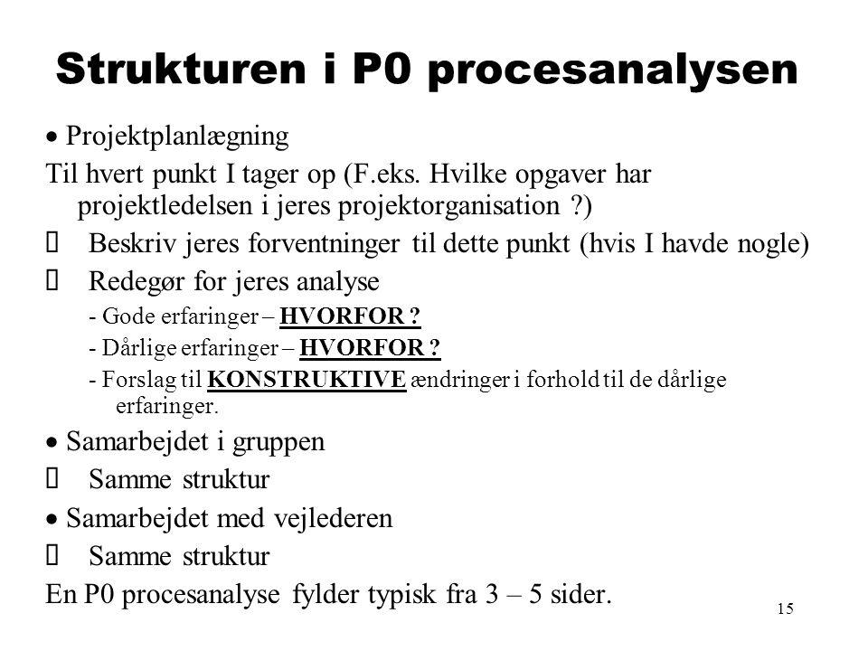 Strukturen i P0 procesanalysen