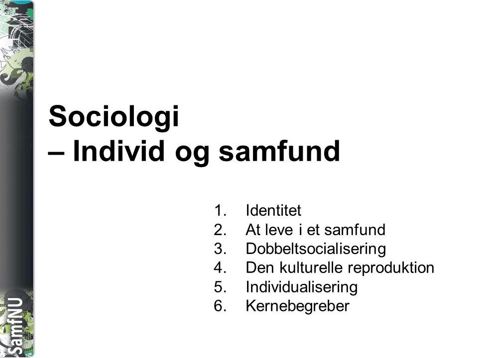 Sociologi – Individ og samfund