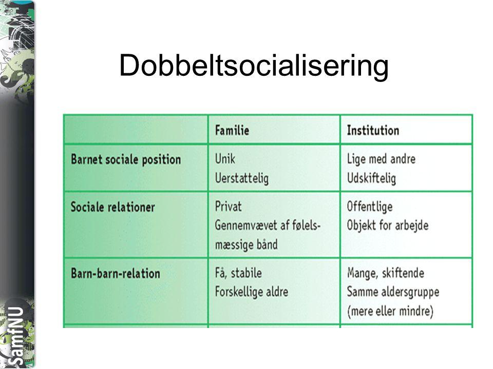 Dobbeltsocialisering