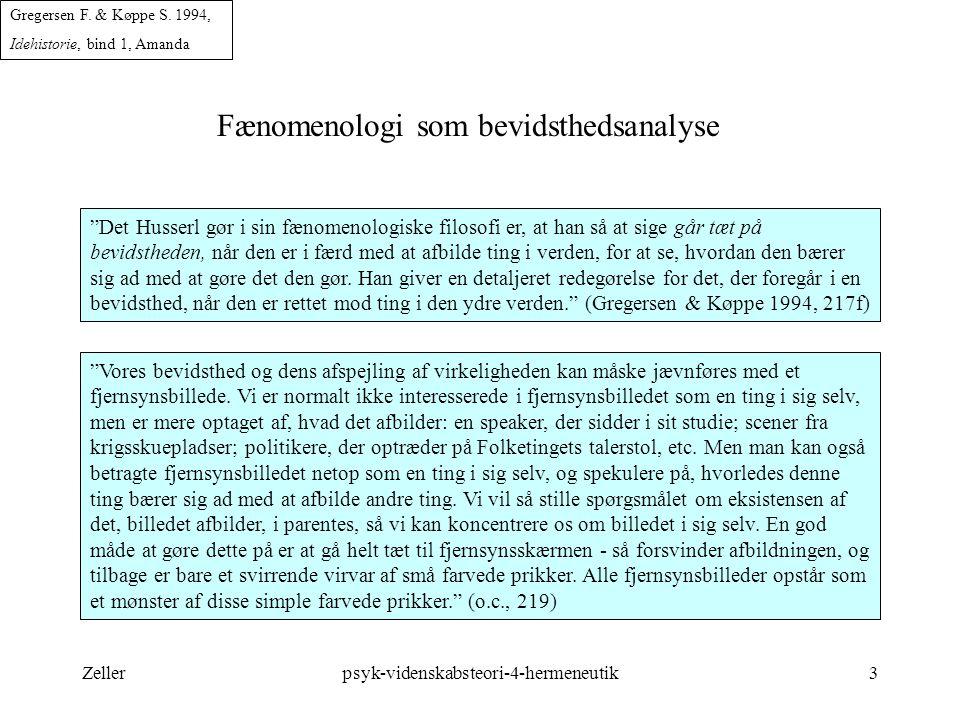 Fænomenologi som bevidsthedsanalyse