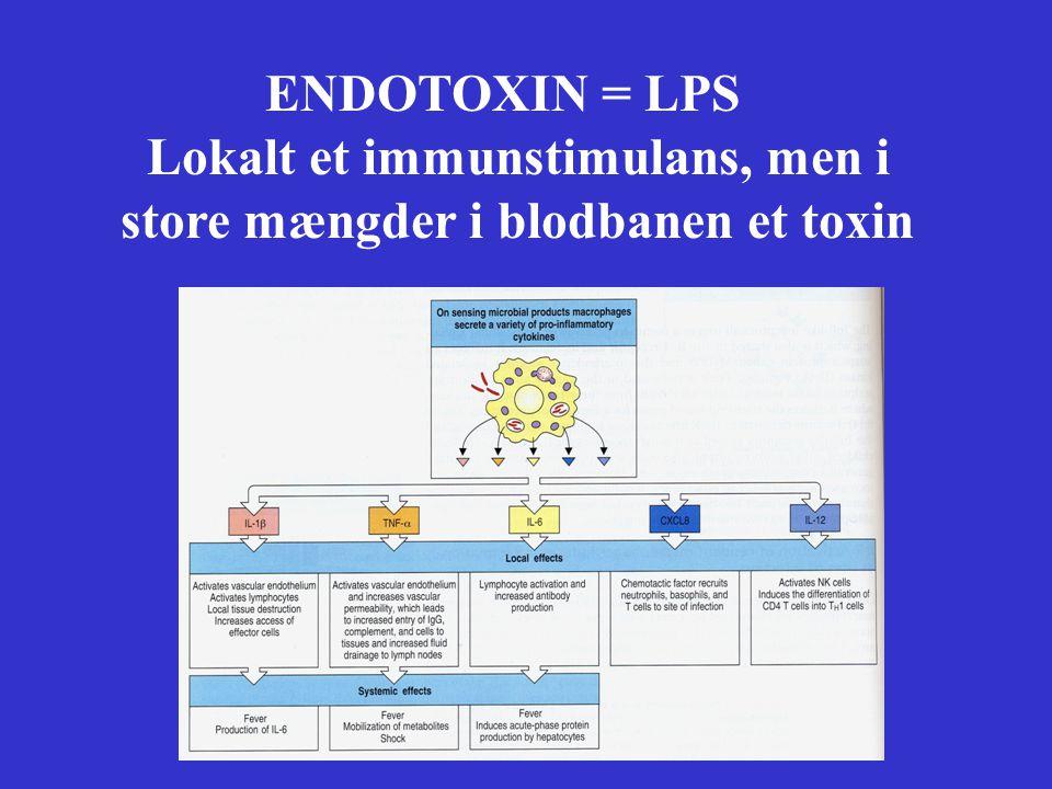 ENDOTOXIN = LPS Lokalt et immunstimulans, men i store mængder i blodbanen et toxin