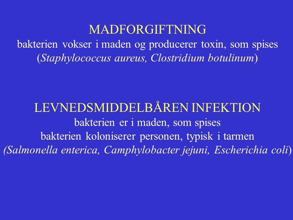 LEVNEDSMIDDELBÅREN INFEKTION