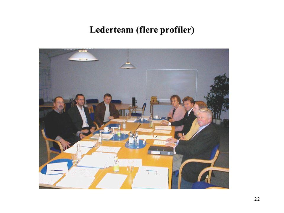 Lederteam (flere profiler)