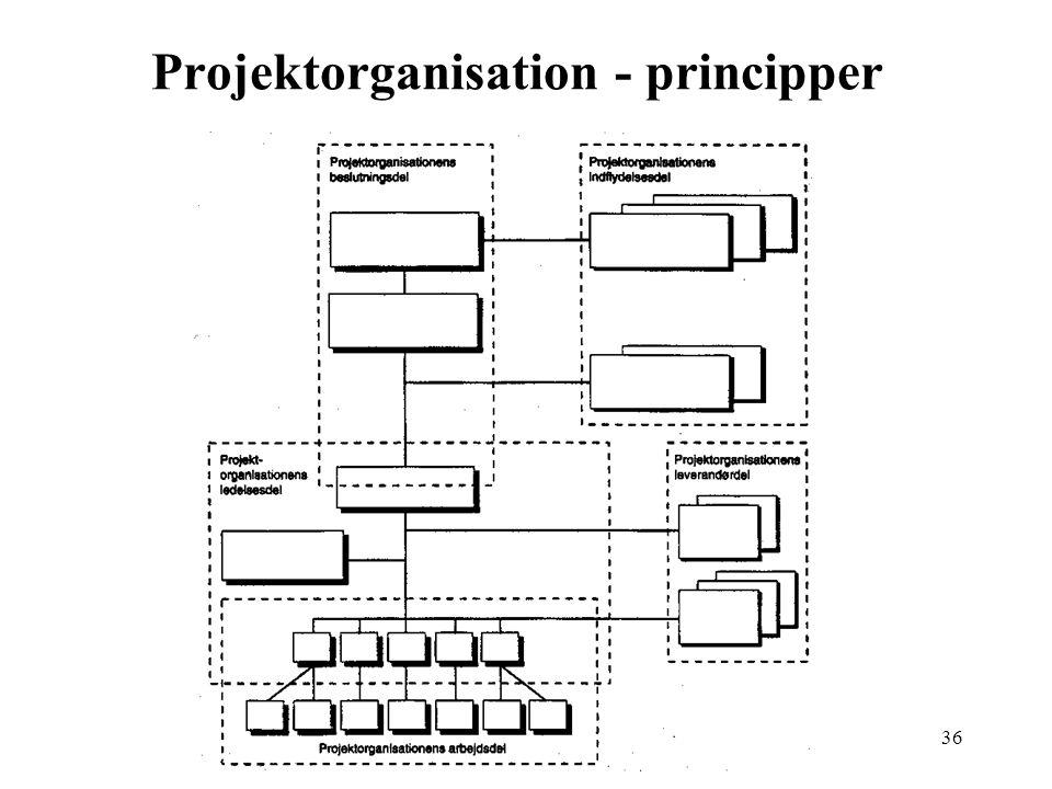 Projektorganisation - principper