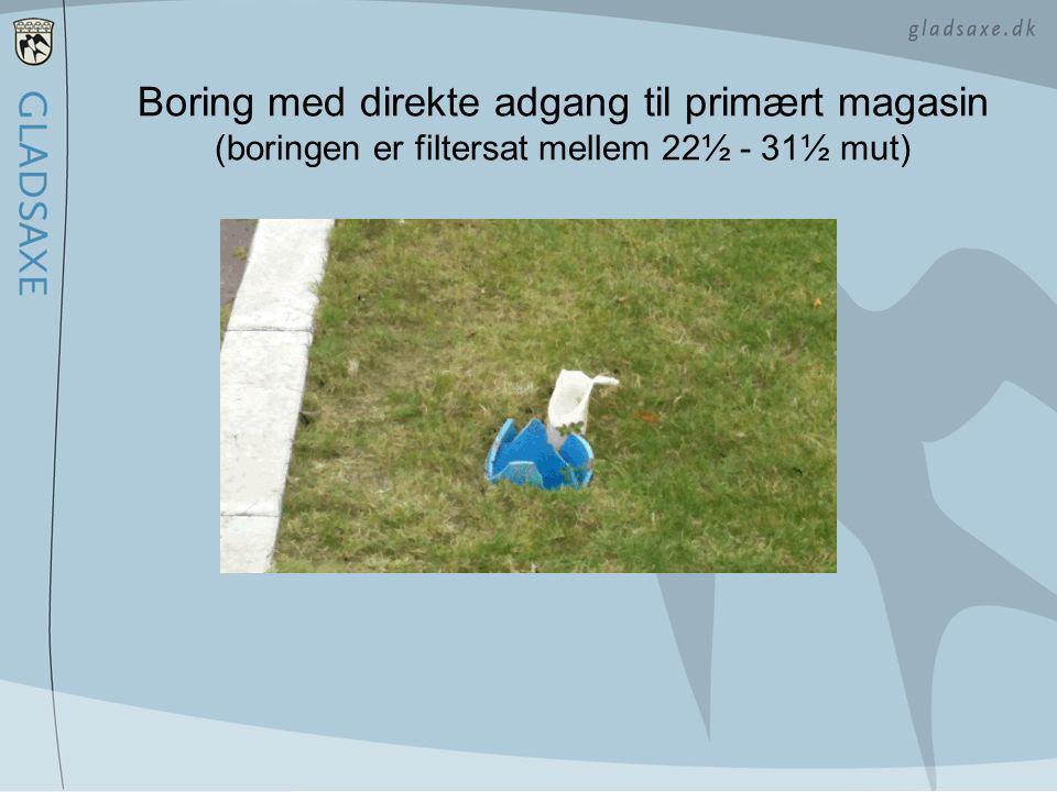 Boring med direkte adgang til primært magasin (boringen er filtersat mellem 22½ - 31½ mut)
