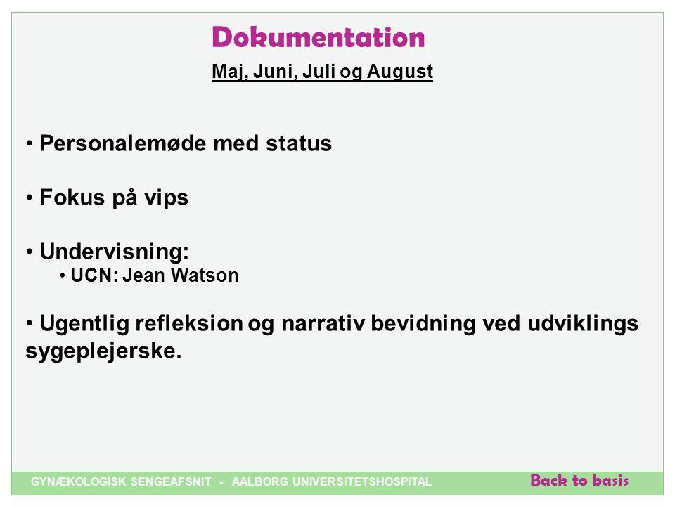 Dokumentation Personalemøde med status Fokus på vips Undervisning: