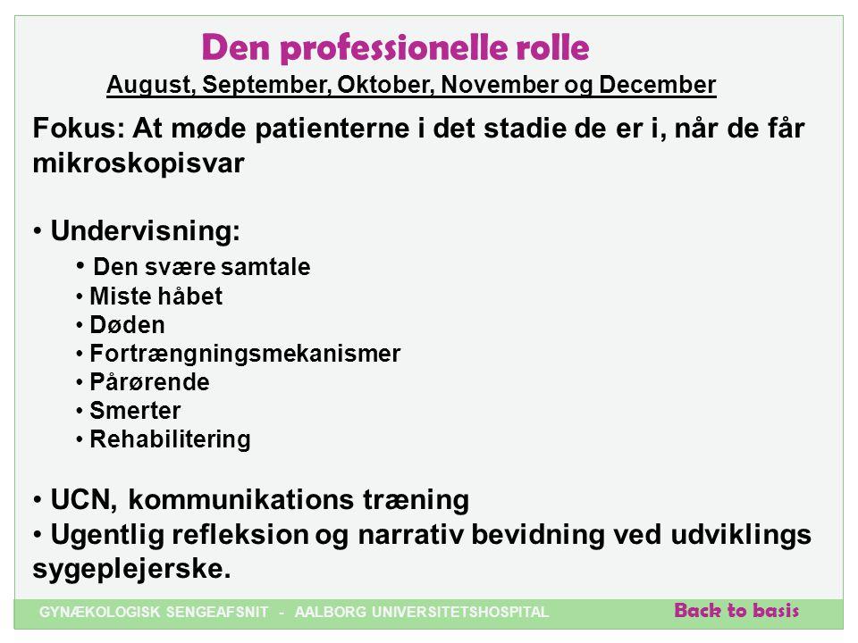 Den professionelle rolle