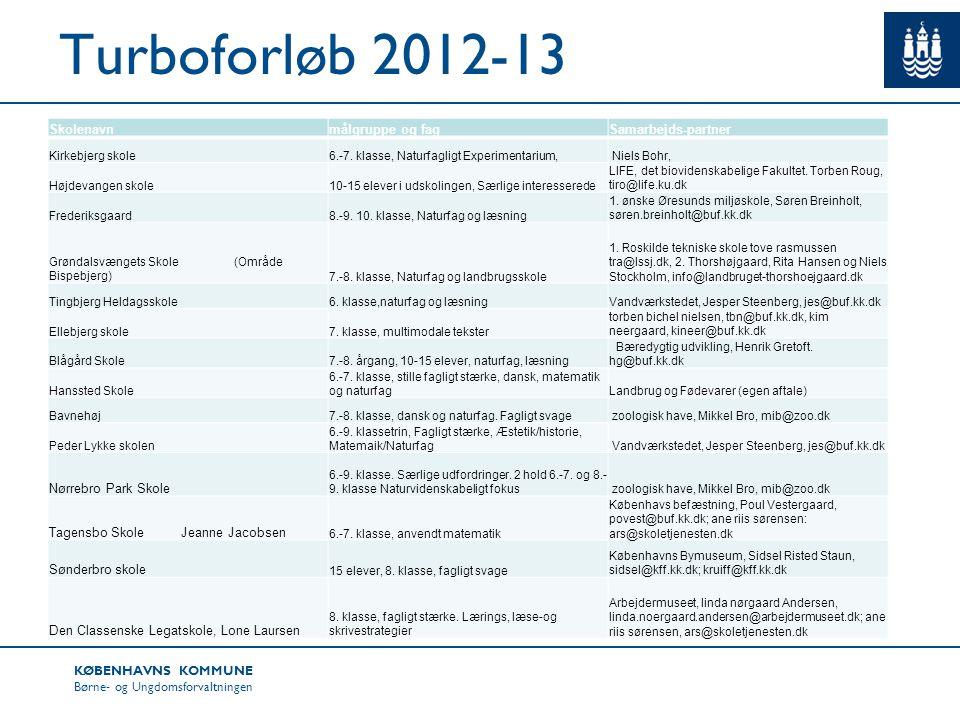 Turboforløb 2012-13 Skolenavn målgruppe og fag Samarbejds-partner