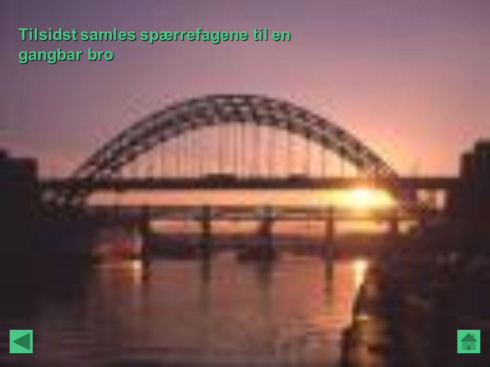 Tilsidst samles spærrefagene til en gangbar bro
