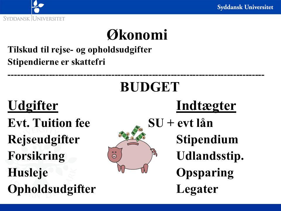 Økonomi Udgifter Indtægter Evt. Tuition fee SU + evt lån
