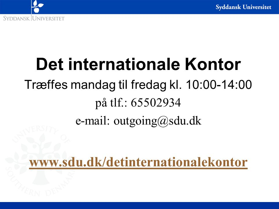 Det internationale Kontor