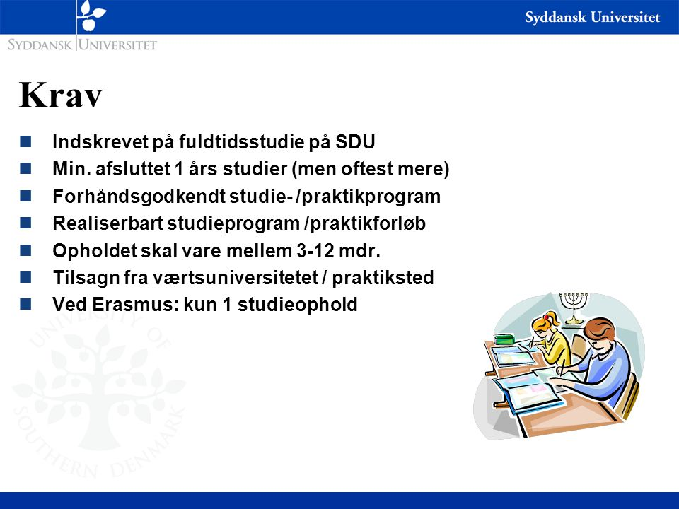 Krav Indskrevet på fuldtidsstudie på SDU