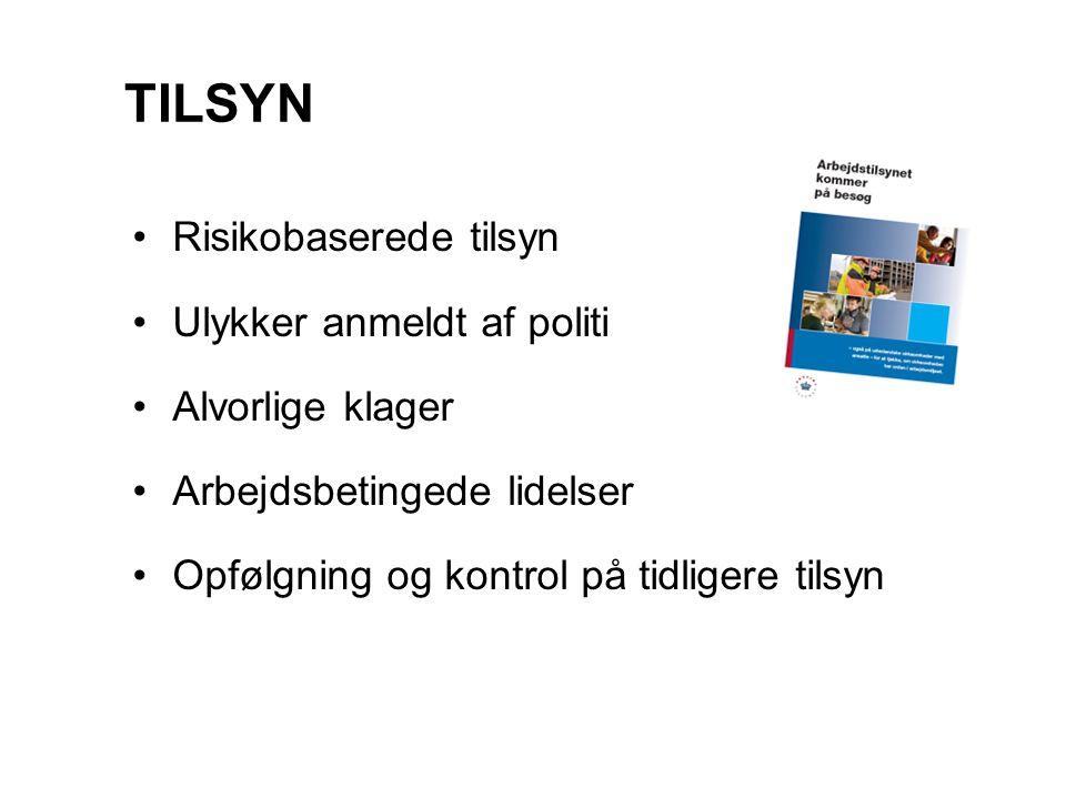 TILSYN Risikobaserede tilsyn Ulykker anmeldt af politi