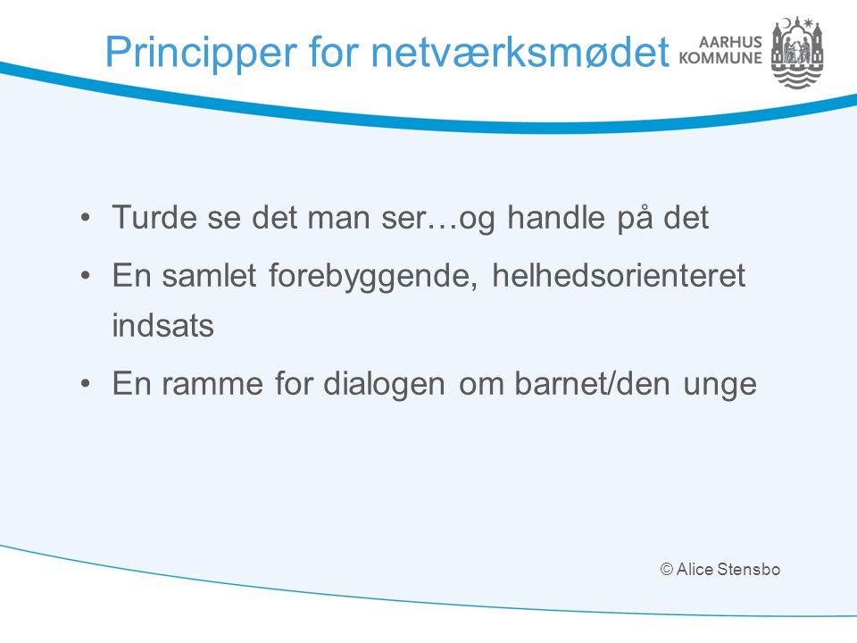Principper for netværksmødet