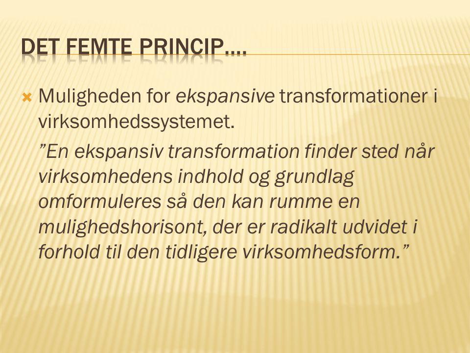 Det femte princip…. Muligheden for ekspansive transformationer i virksomhedssystemet.