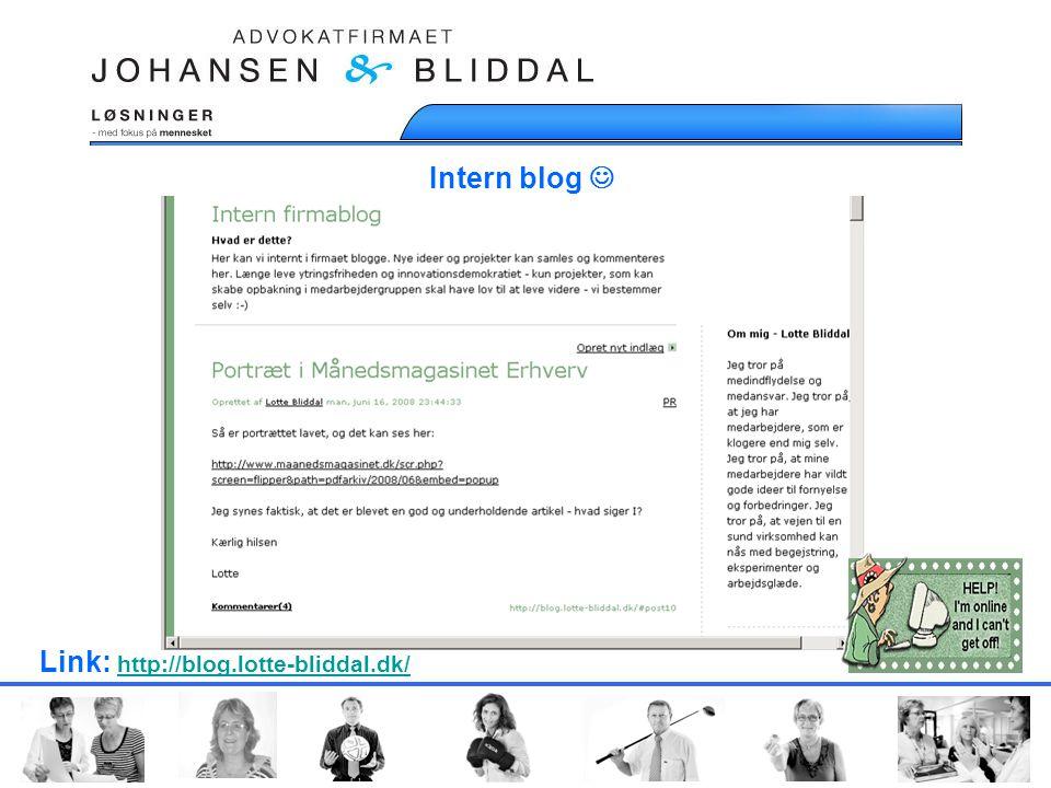 Intern blog  Link: http://blog.lotte-bliddal.dk/