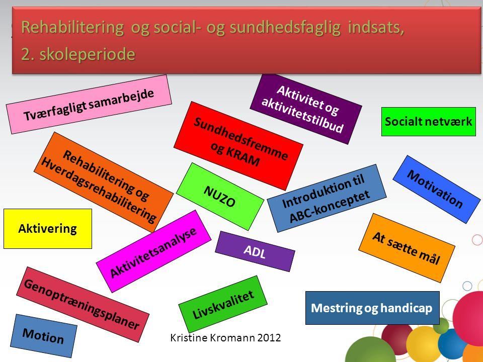 Rehabilitering og social- og sundhedsfaglig indsats, 2. skoleperiode
