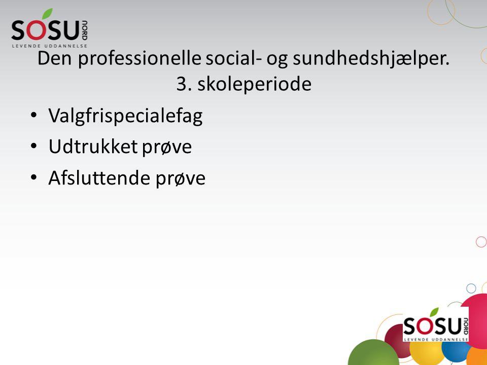 Den professionelle social- og sundhedshjælper. 3. skoleperiode