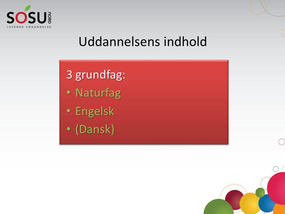 Uddannelsens indhold 3 grundfag: Naturfag Engelsk (Dansk)
