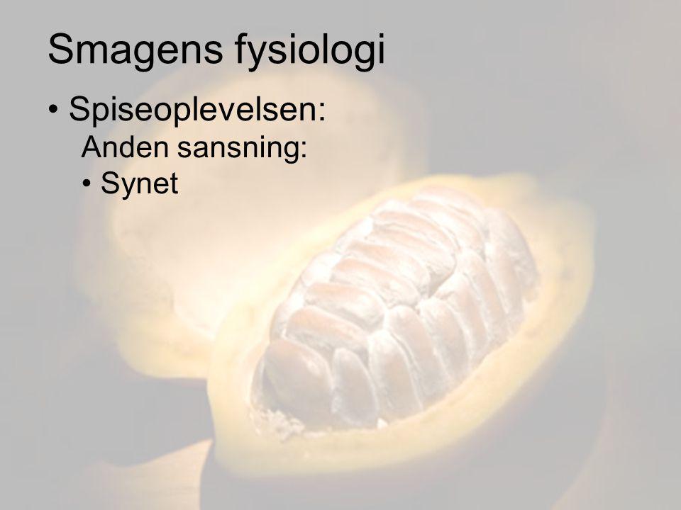Smagens fysiologi Spiseoplevelsen: Anden sansning: Synet