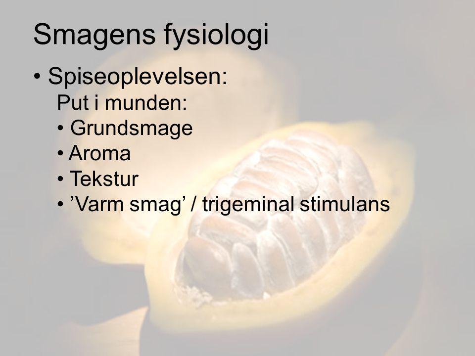 Smagens fysiologi Spiseoplevelsen: Put i munden: Grundsmage Aroma