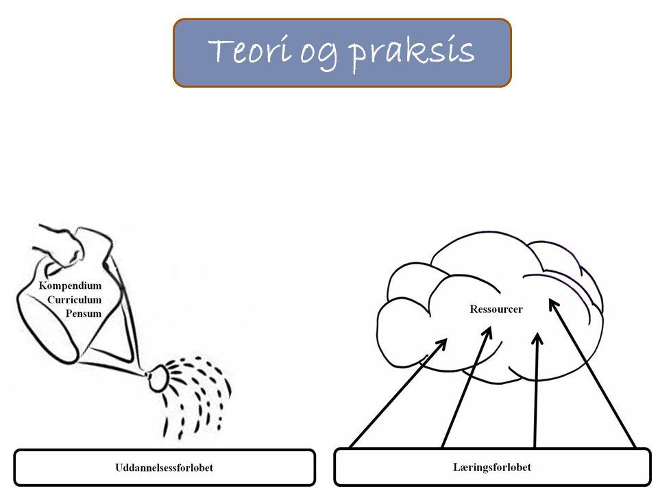 Teori og praksis